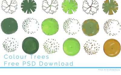 Colour Trees – Free PSD Download