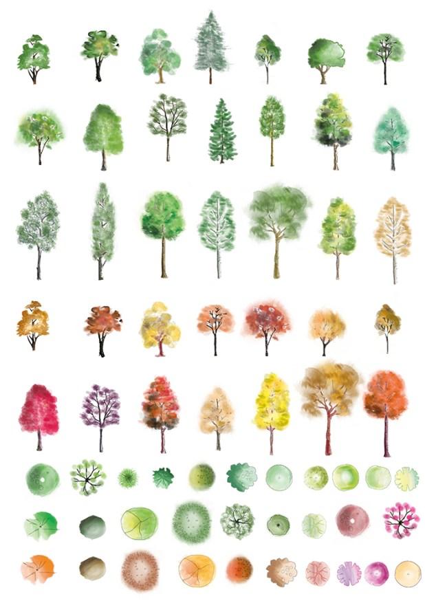 Colour trees photoshop