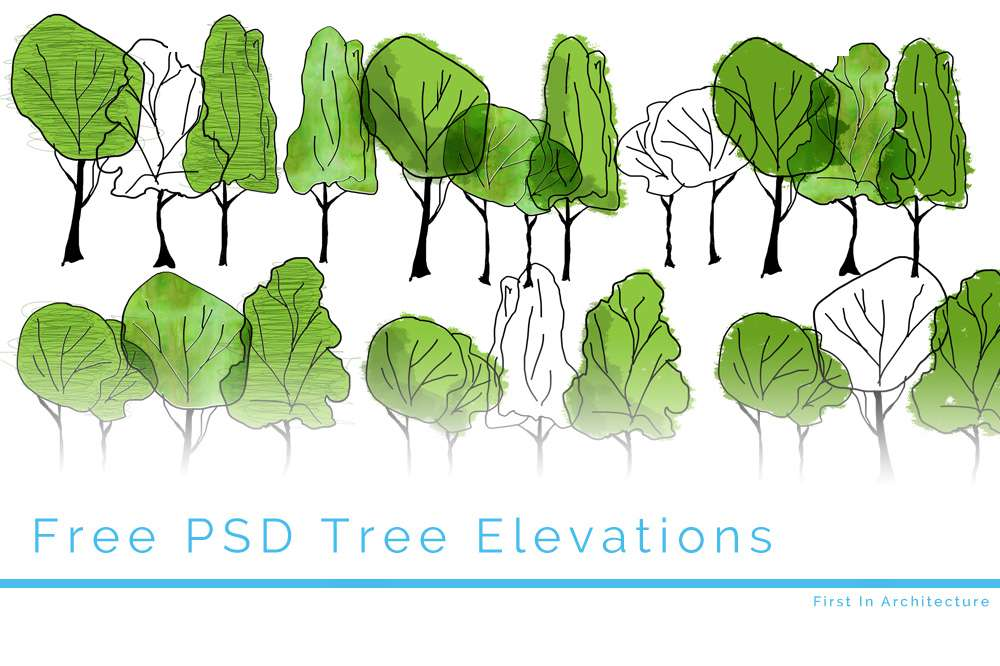 Feature Image Tree Elevations 3