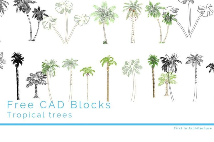 Feature Image tree cad blocks