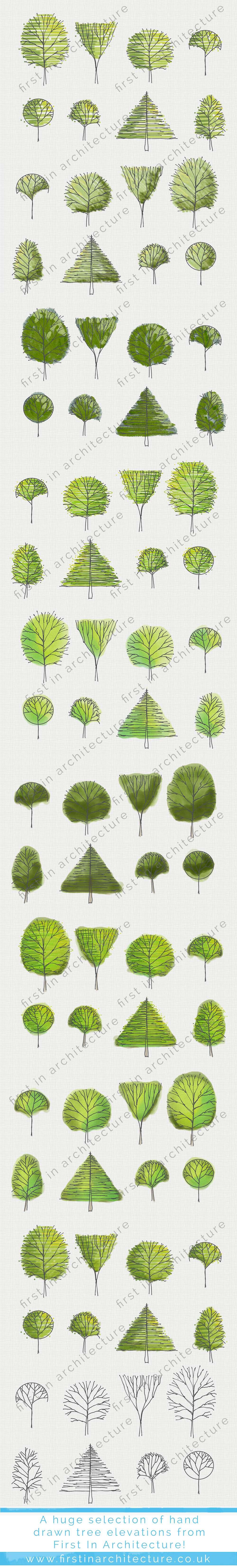 Sketchy Tree Elevation Set 7