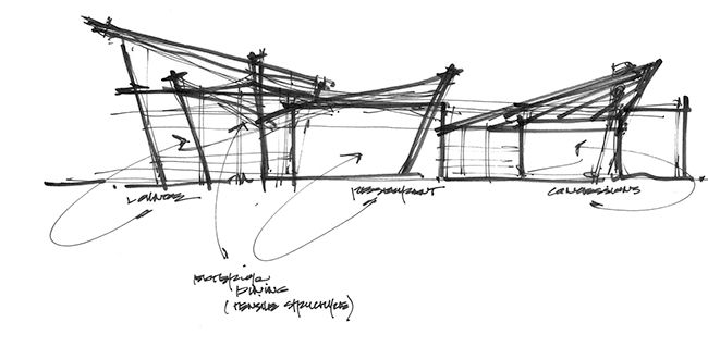 architectural-parti-sketch