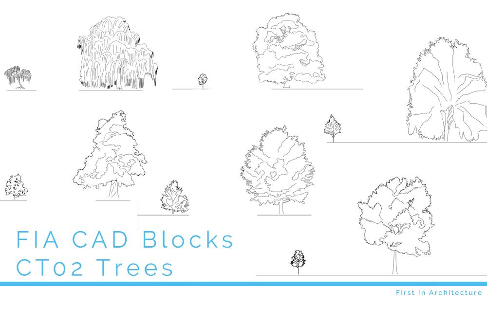 CAD Blocks Trees CT02