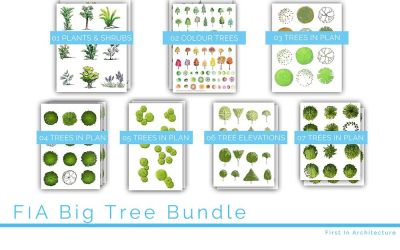 FIA Big Tree Bundle