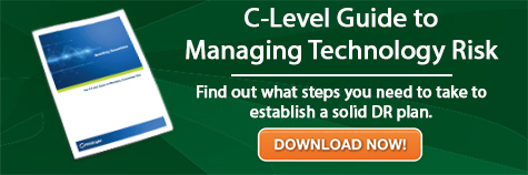 c-level-guide-to-managing-technology-risk-firstlight
