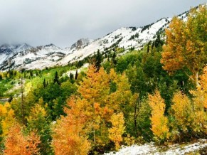 Alta, Utah was awash in color on Thursday - and it included white. (photo: Evan Thayer)