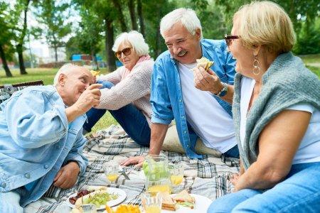 Group of Seniors Enjoying Picnic in Park