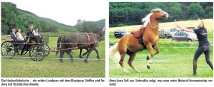 tagspferd3
