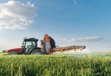 Il piccolo imprenditore agricolo può presentare il Modello 730?