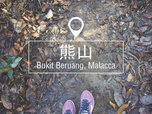 马六甲熊山