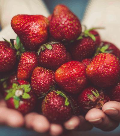 Strawberries, Swimsuits, and Spiritual Refreshment