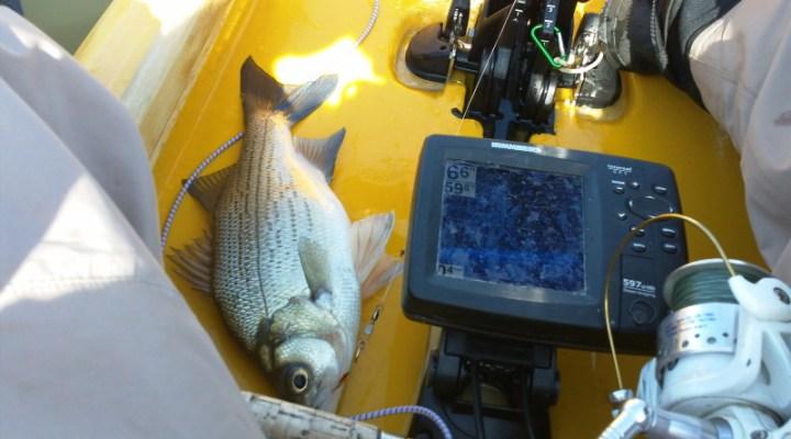 humminbird 597ci fish finder