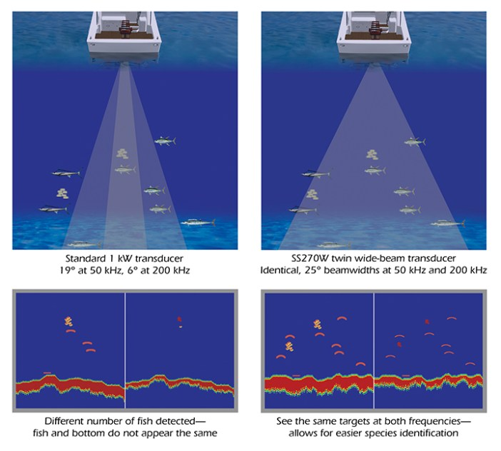 fish finder sonar work