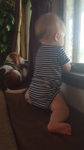"My son and dog looking out the window, enjoying the ""little things""."