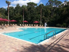 Hawk Park Pool, FishHawk Ranch Real Estate, FishHawk Ranch Homes For Sale