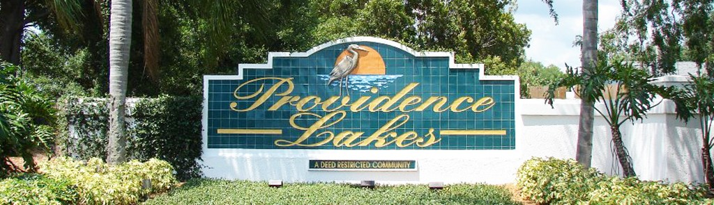 Providence Lakes Real Estate