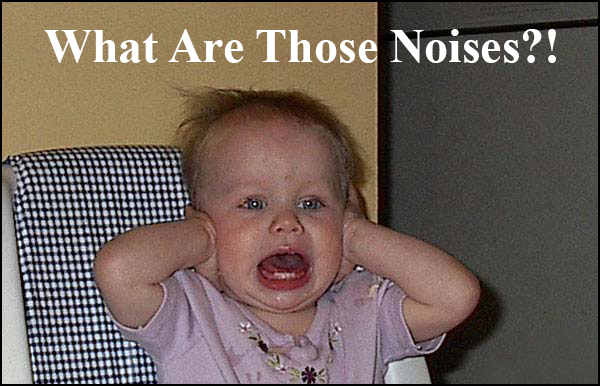 What Are Those Noises?!