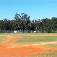 FishHawk Newsome High School Athletics