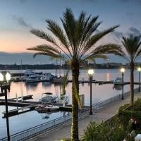 Tampa Area Real Estate