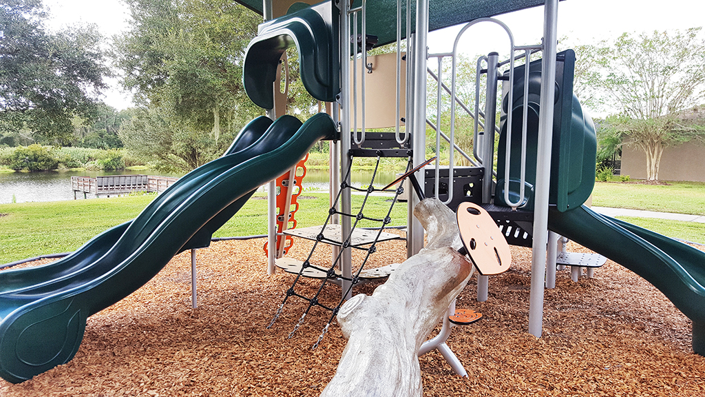 FishHawk Ranch Parks and Playgrounds Bridgeview
