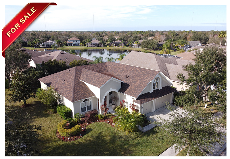 FishHawk Ranch Home For Sale | 5-Bedroom Home | 16102 Bridgedale Dr Lithia FL