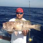 islamorada yellowedge grouper
