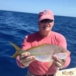 islamorada yellowtail