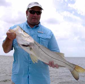 Snook from Everglades Nat'l Park Fishing