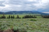 Fish Lake National Forest Meadow