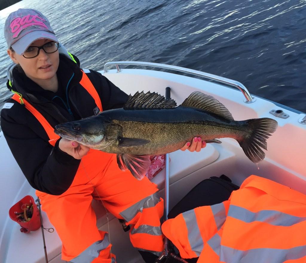 kalastus kalastusblogi kuha