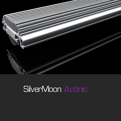 gnc silvermoon actinic