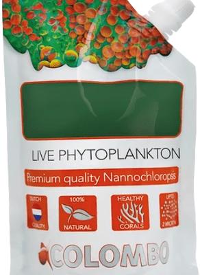 Colombo Fitoplancton Vivo