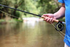The 12 Best Beginner Fly Rods 2019: Start Fly Fishing Now!