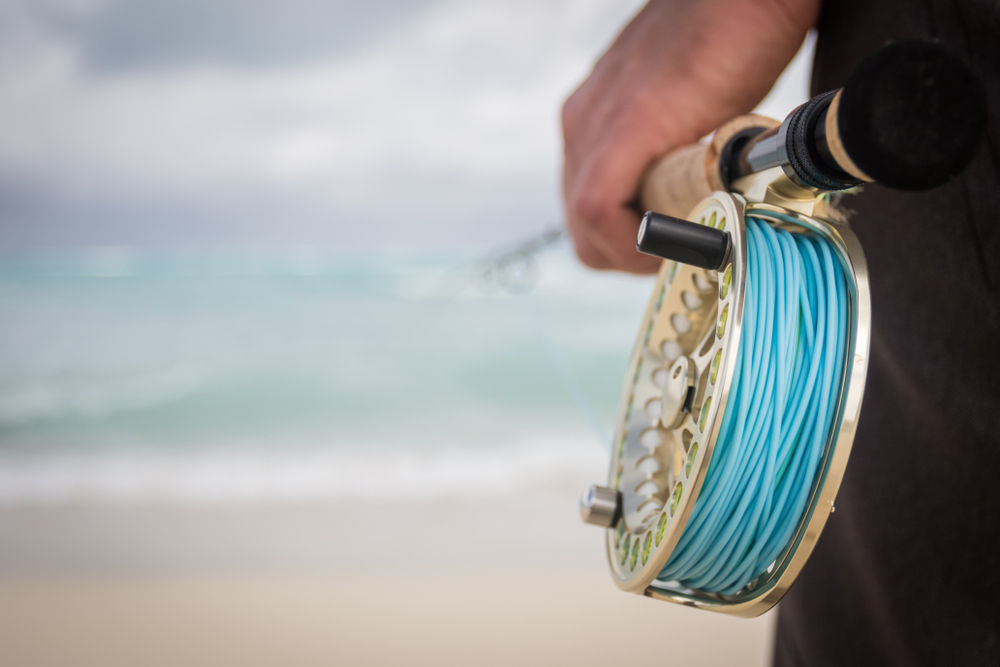 How to Choose the Best Fly Fishing-Reels
