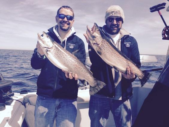 Early season brown trout