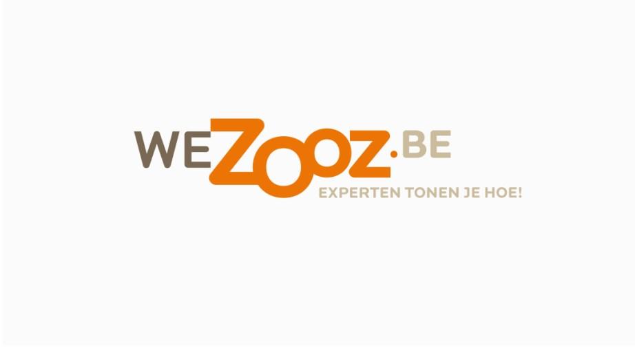 WeZooz_logo