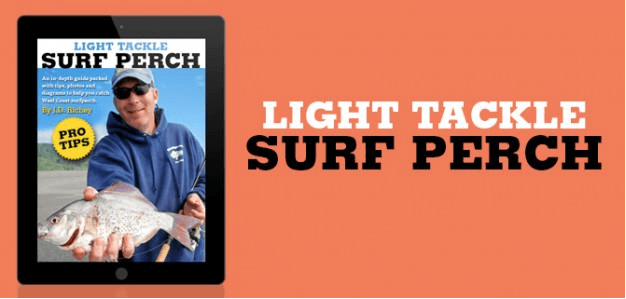 Surf Perch