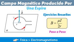 Campo Magnético Producido por una Espira