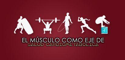 cartel_musculo_411x200