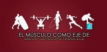 El músculo como eje de salud cardiometabólica