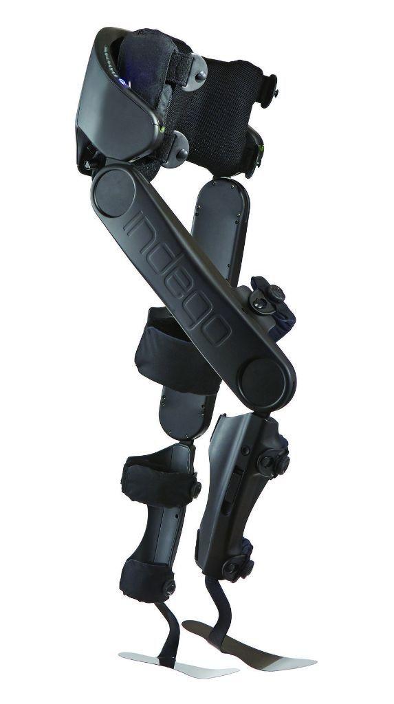 exoesqueletos y fisiomuro02