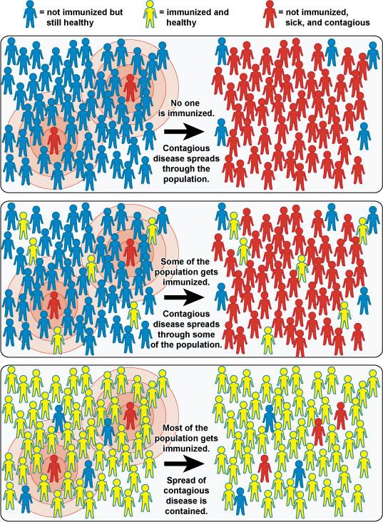 vacunarse y fisiomuro4