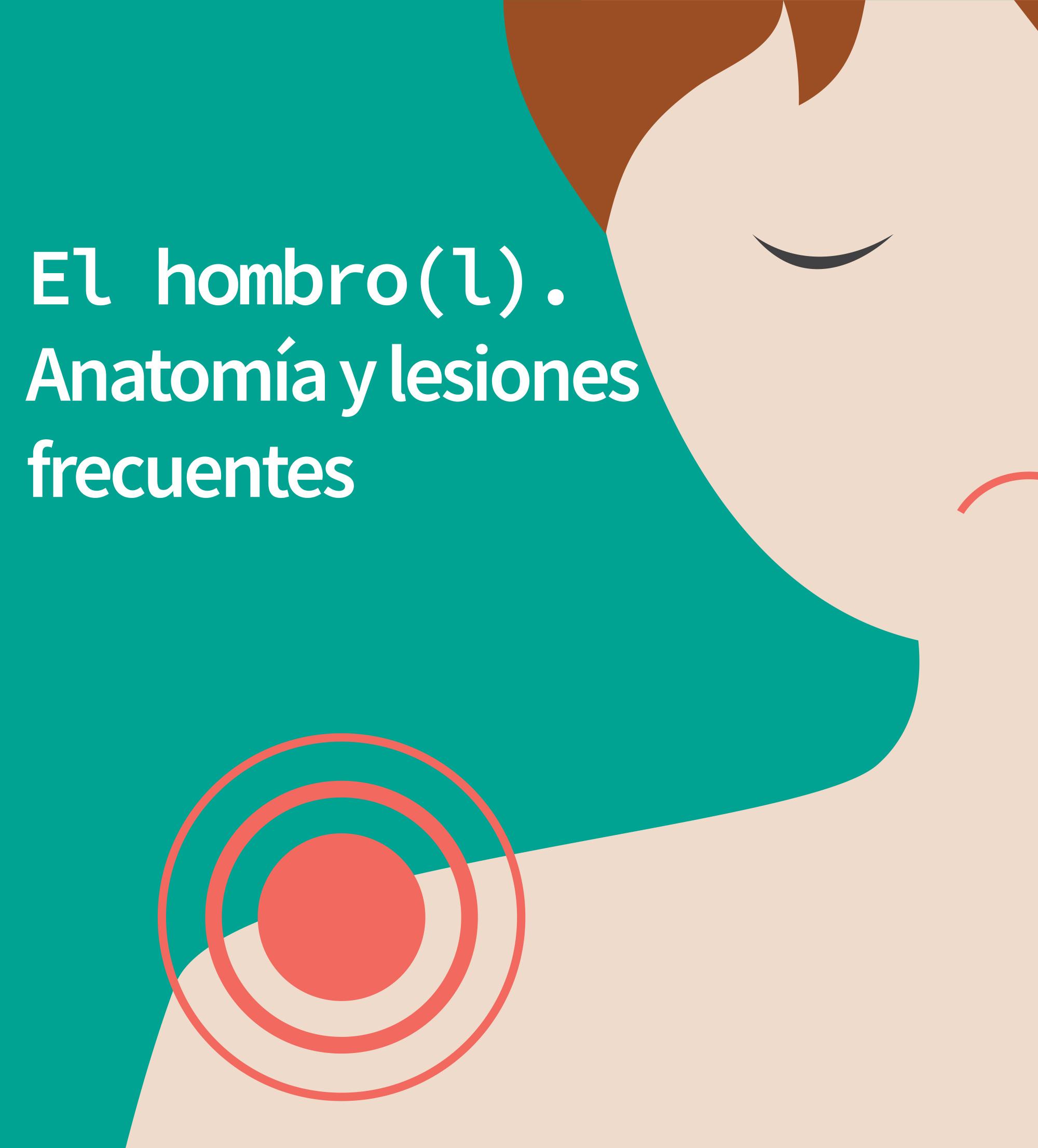 El hombro (l). Anatomía y lesiones frecuentes - Fisiosite ...