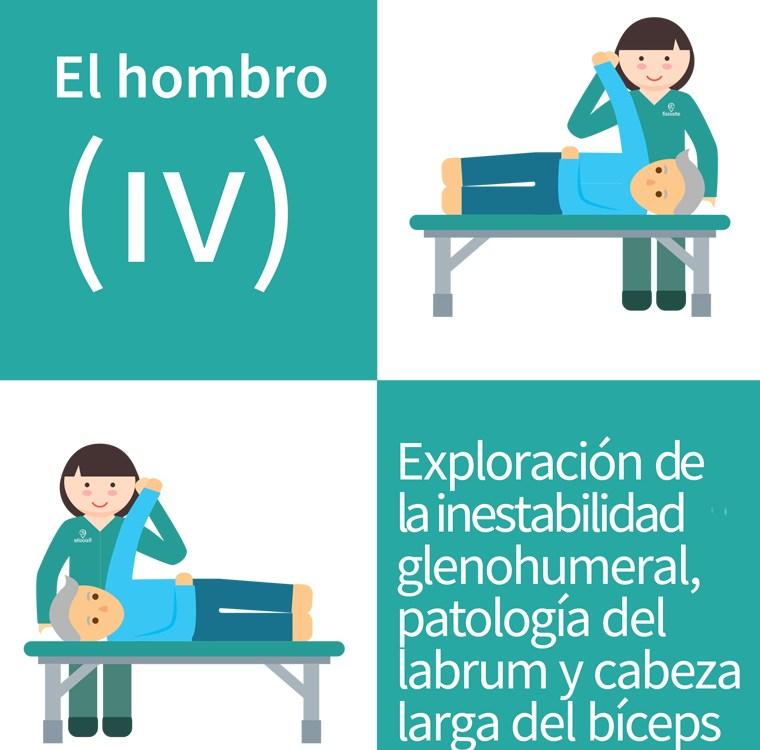 hombro IV