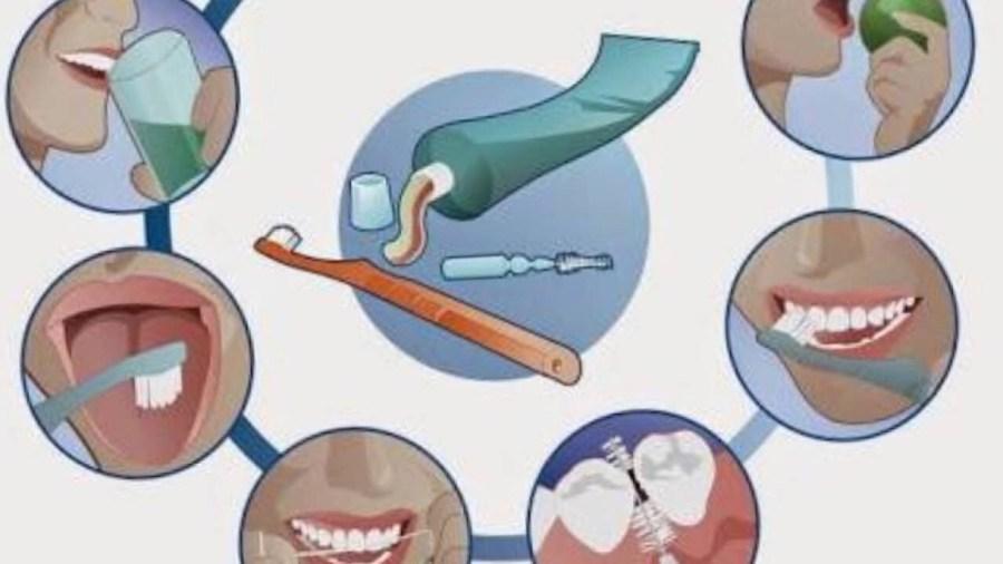 Esquema_con_distintos_tipos_de_higiene