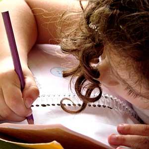 school planners & homework diaries