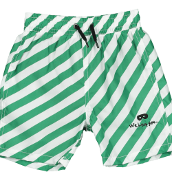 swim suit pants.png
