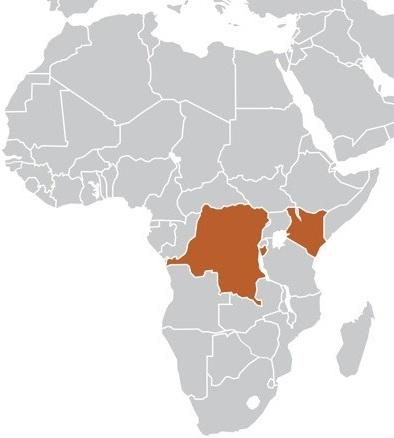 Africa newsletter1