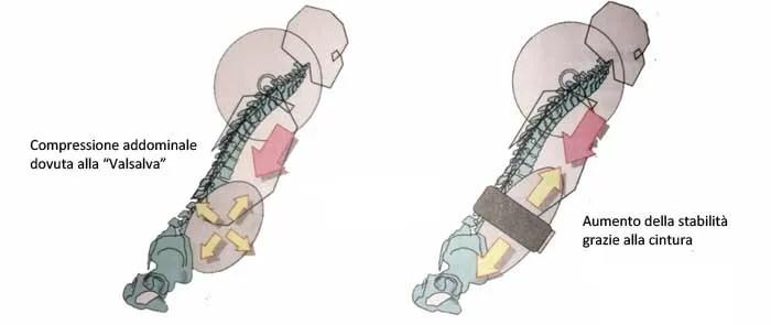 cintura body building uso
