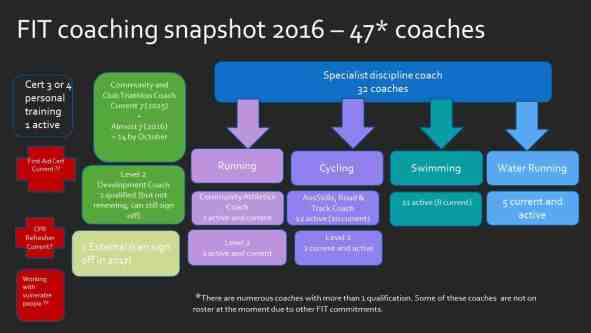 FIT coaching Snapshot 2016